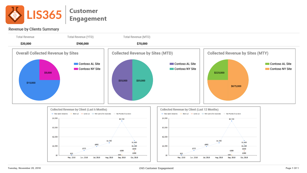 LIS365 Customer Engagement-Report